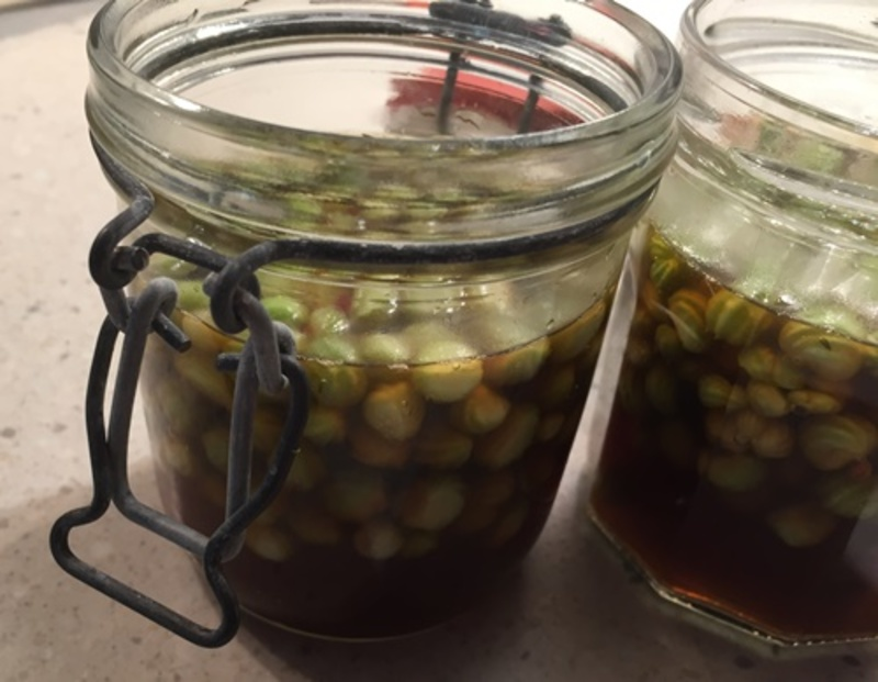 putting,nasturtium,seeds,in,jar