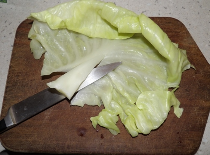 cutting,hard,stalk,out,of,cabbage,leaves