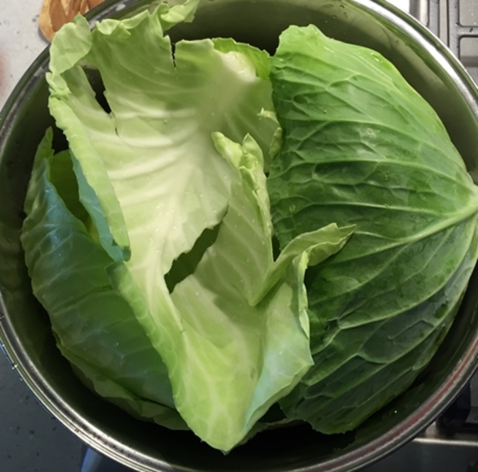 getting,ready,to,steam,cabbage,leaves