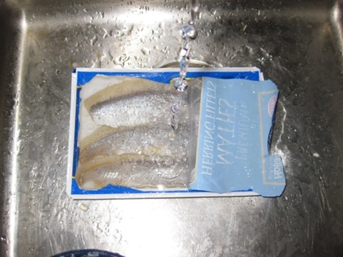 herring,fillets