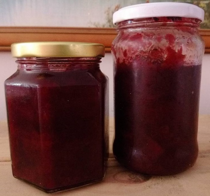 Plum Jam, photo copyright J Edgley 2018