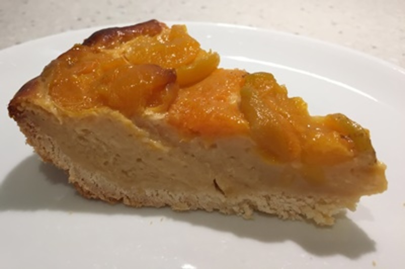 slice,of,delicious,home,made,apricot,custard,pie