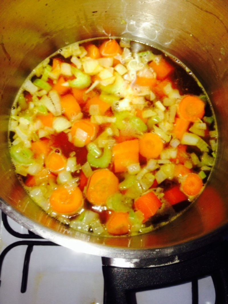 Bowl of soup  - Carrot and Ginger Soup