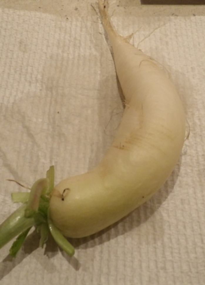 white,radish,or,daikon,for,baked,prawn,risotto