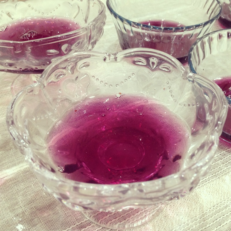 Panna Cotta with Blueberry Coulis