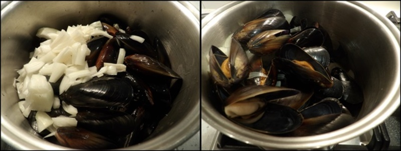 mussels,before,and,after,cooking  - Mussels in Creamy Fettuccine with a Strawberry and Avocado Salad