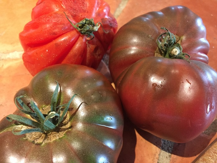 Tomato brushetta, recipes for stale bread, what to do with stale bread